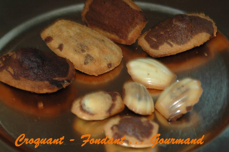 madeleines marbrées au chocolat novembre 2008 057 copie
