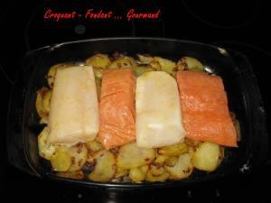 Dos de cabillaud et saumon à l'orange - fevrier 2009 052 copie