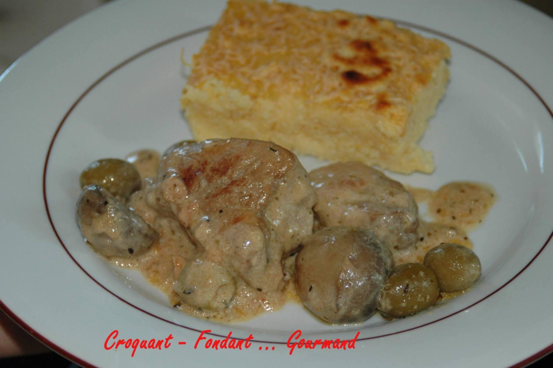 Petite mijotée de porc -Gratin de Polenta - janvier 2009 050 copie