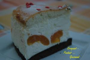 Cheesecake aux abricots - aout 2009 097 copie