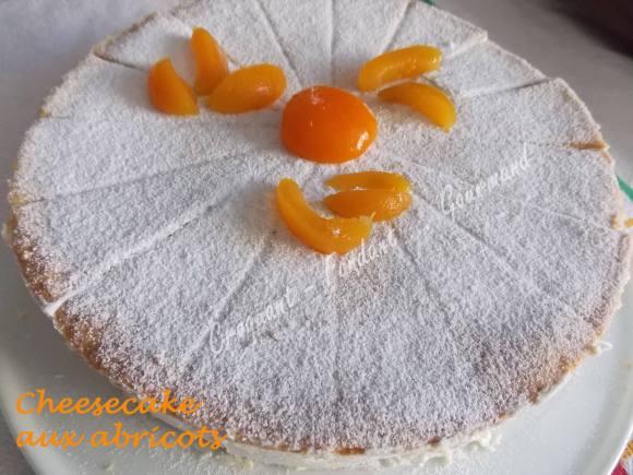 Cheesecake aux abricotsDSCN7397