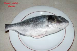 Daurade Maltaise - DSC_5509_3089