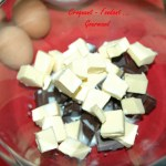Gâteau glacé au chocolat - DSC_7398_5207
