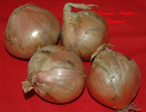 Bouchées au confit d'oignon et foie gras - DSC_8338_6101