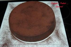 Fondant- choco-café -DSC_9396_7324