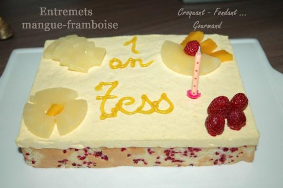 Entremets Mangue-Framboise - DSC_1257_9195