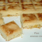 Flan ananas-coco DSC_1368_9303