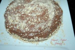 Noisettes et chocolat - DSC_2275_10347