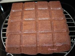 Noisettes et chocolat - DSC_2957_11115