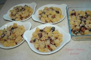 Crumble ananas-noix de coco - DSC_3286_11480