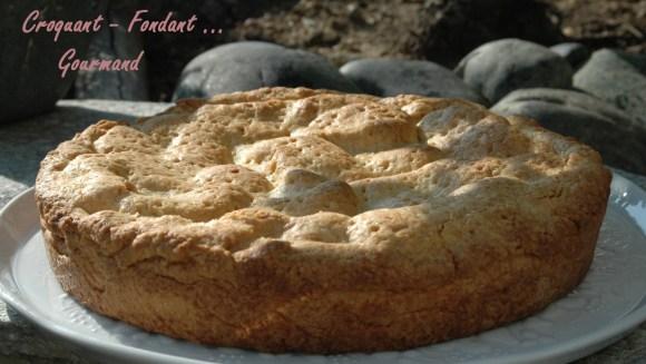 Szarlotka ou tourte aux pommes polonaise -DSC_3641_11824
