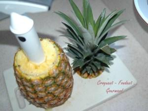 Papillotes d'ananas aux épices - DSC_4153_12326