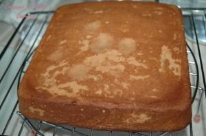 Gâteau moelleux choolat-amande - DSC_5695_14054