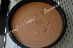 Gâteau moelleux au nutella - DSC_0116_18614