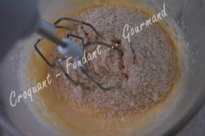Tartelette à la framboise meringuée -DSC_0031_18531
