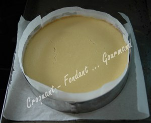 Cheesecake aux framboises - DSC_0244_18742