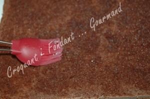 Gâteau 5 minutes au chocolat - DSC_7089_15482