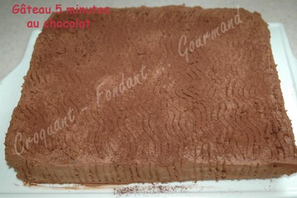 Gâteau 5 minutes au chocolat - DSC_7095_15488