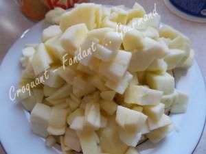 Gâteau brioché aux pommes - DSCN0806_20082