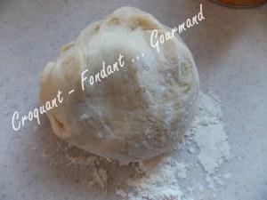 Gâteau brioché aux pommes - DSCN0817_20092