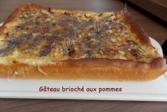Gâteau brioché aux pommes - DSCN0833_20108