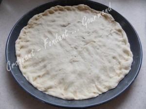 Pizza parmesane DSCN1042_20313