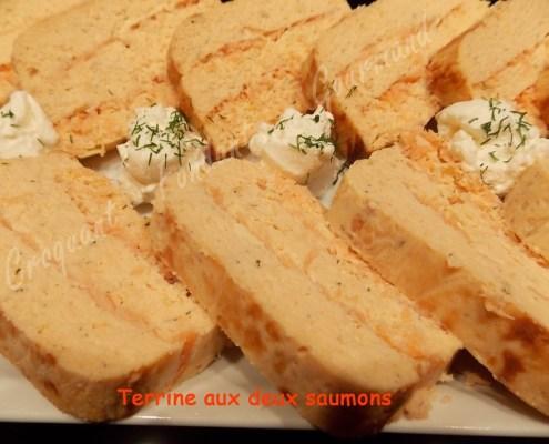 Terrine aux 2 saumons DSCN2448_22323 (Copy)