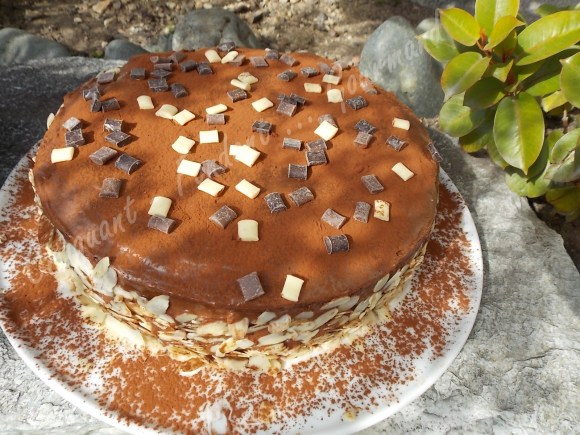 Mon gâteau de famille DSCN4266_24198