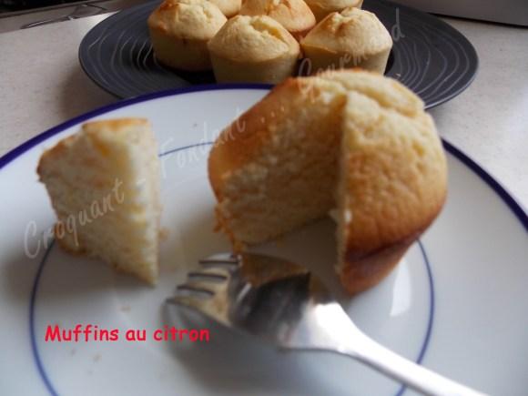 Muffins au citron DSCN5466_25522