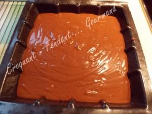 Fondant glacé au chocolat DSCN5051_25041