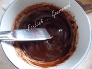Fondant glacé au chocolat DSCN5057_25047