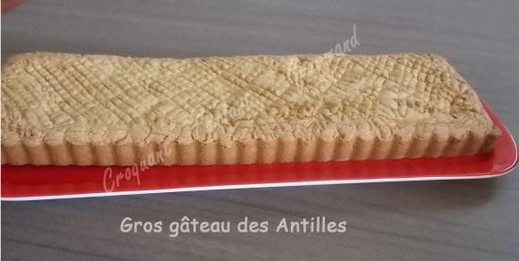 Gros gâteau des Antilles DSCN6547_26667