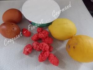 Un fraisier pour Tess DSCN6136_26192