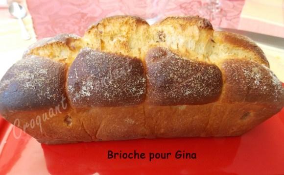 Brioche pour Gina DSCN7633_27775