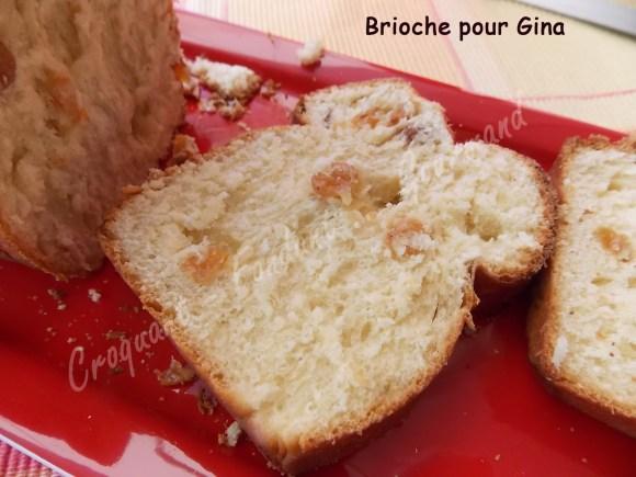 Brioche pour Gina DSCN7639_27781