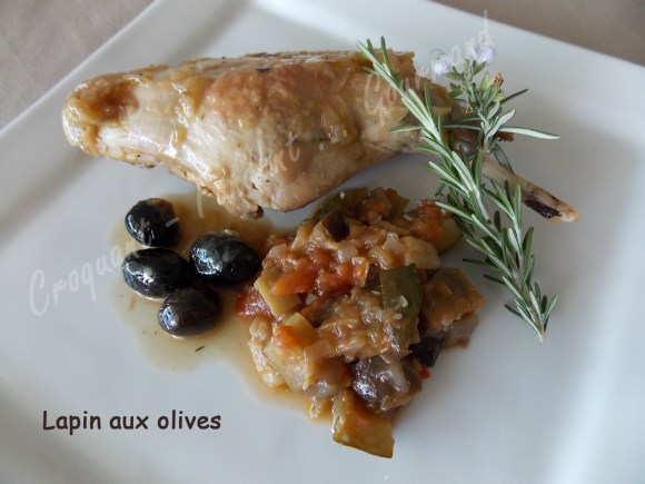 Lapin aux olives DSCN8226_28402