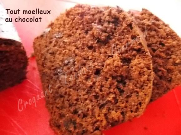 Tout moelleux au chocolat DSCN7787_27963