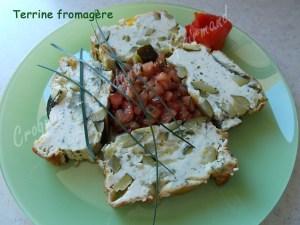 Terrine fromagère DSCN9110_29317