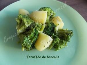 Étouffée de brocolis DSCN1836_31489