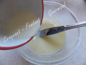Gâteau choco tout blanc DSCN7281_27400