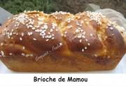Brioche de Mamou Index IMG_5829_34493