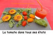 La tomate dans tous ses états Index DSCN9250