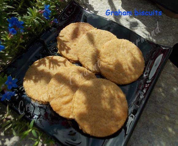 Graham biscuits DSCN2957_32709
