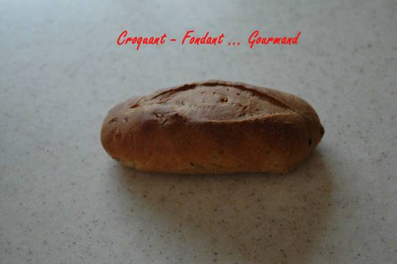 Petits pains aux olives-tomates & origan - mai 2009 221 copie