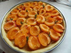 Tarte briochée abricot romarin DSCN4229_34622