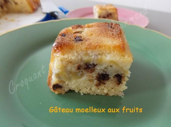 Gâteau moelleux aux fruits DSCN0474_30012