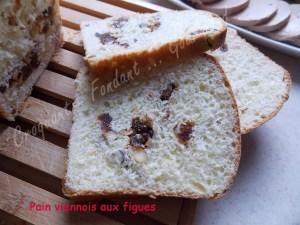 Pain viennois aux figues et noisettesDSCN1538_31152