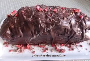 Cake chocolat-gianduja DSCN7506