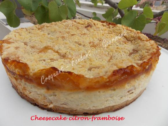 Cheesecake citron-framboise DSCN7699