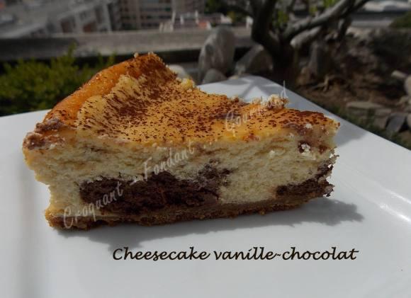 Cheesecake vanille-chocolat DSCN8061